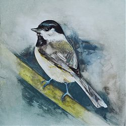 Title:Chickadee Artist:Tina Hayes Year:2016 Medium:Gouache on gessoed board Dimensions:37cm x 31cm Price:€350