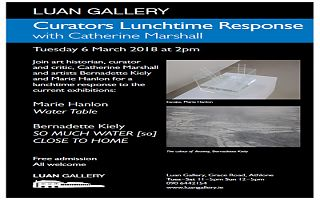 Curators Lunchtime Response with Catherine Marshall at Luan Gallery
