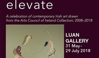 Elevate – A Celebration of contemporary Irish art drawn from the Arts Collection of Ireland Collection: 2008 – 2010, at Luan Gallery Athlone
