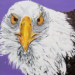 Title: White Eagle  Artist: Catherine Brennan Year:2020 Medium: Acrylic on canvas  Dimensions:76 x 101 cm Price:€300
