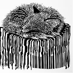 Title: Fox in Lockdown Artist: Jill Parkinson Year: 2020 Medium: Linocut Print Dimensions: 23x22cm Price:€85
