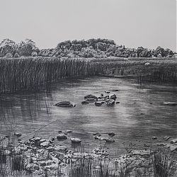 Title: Hill O' Berries Artist: Lelia Henry Year: 2019 Medium: Graphite Dimensions: 56 x 76cm Price:€950