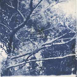 Trees 1 by Margo Mc Nulty, Luan Gallery Art Fair